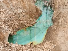 """河北深州:绿色废水直排河道 """"河长""""不履职成摆设"""