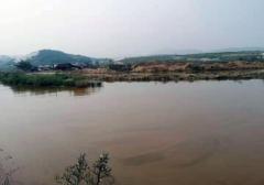 """葫芦岛市连山区:非法""""淘沙""""猖獗  到"""